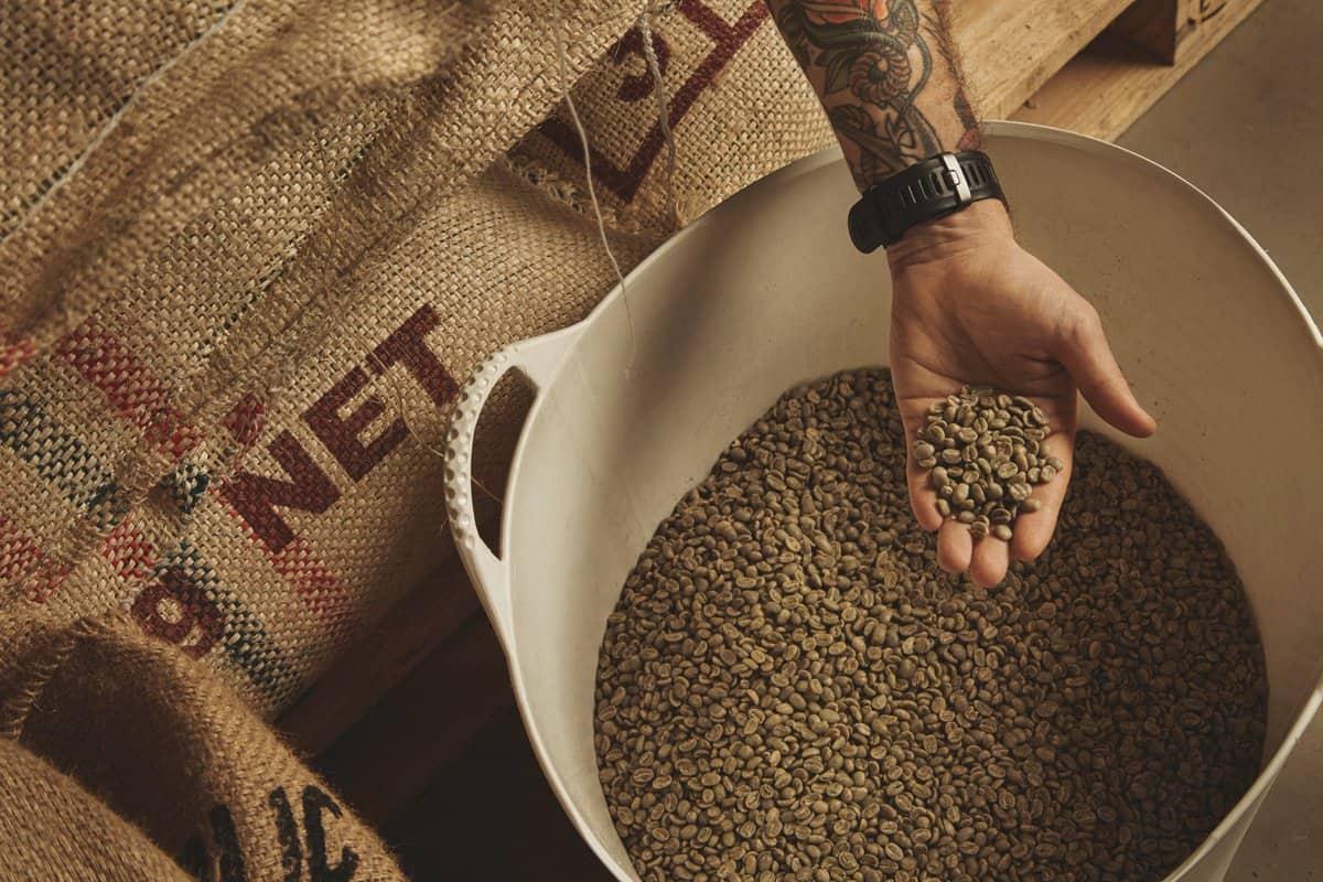 Influência da temperatura na germinação e vigor de sementes