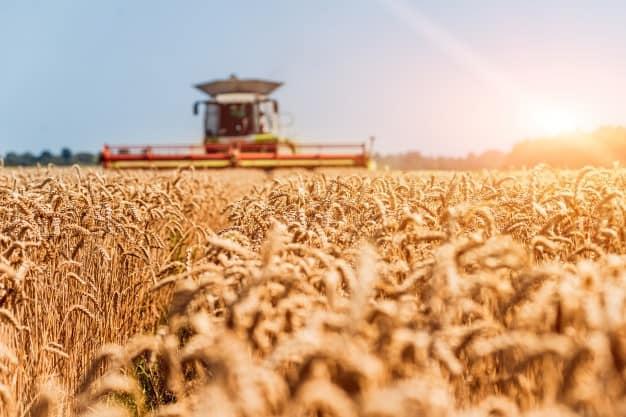 agronegócio e mercado exterior